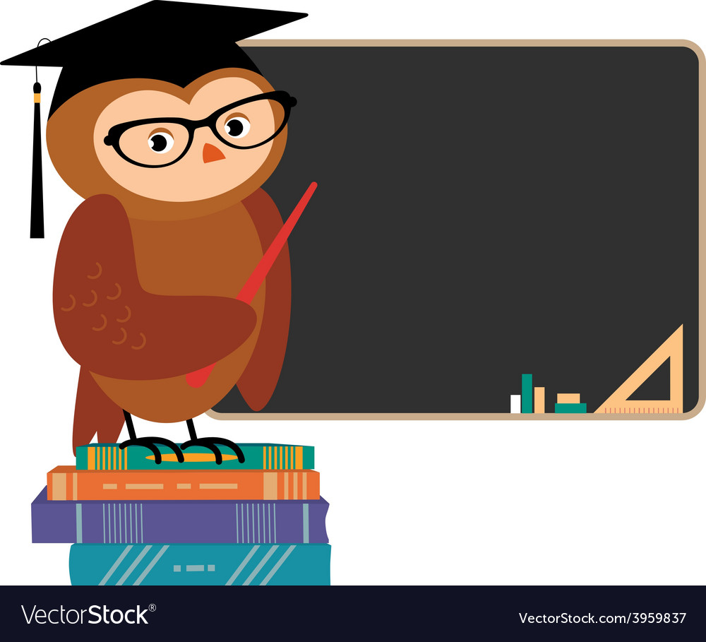 Wise owl and books vector