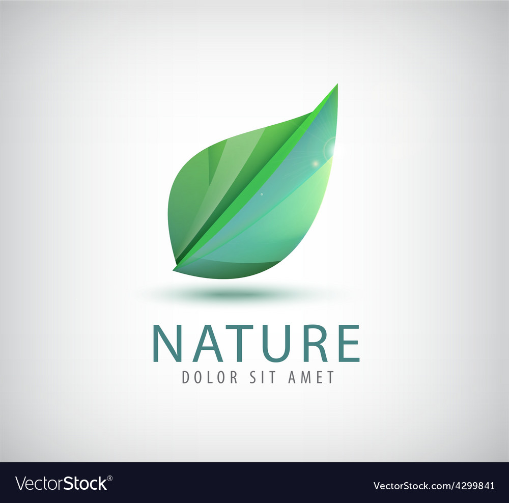 Green leaf nature organic icon vector | Price: 1 Credit (USD $1)