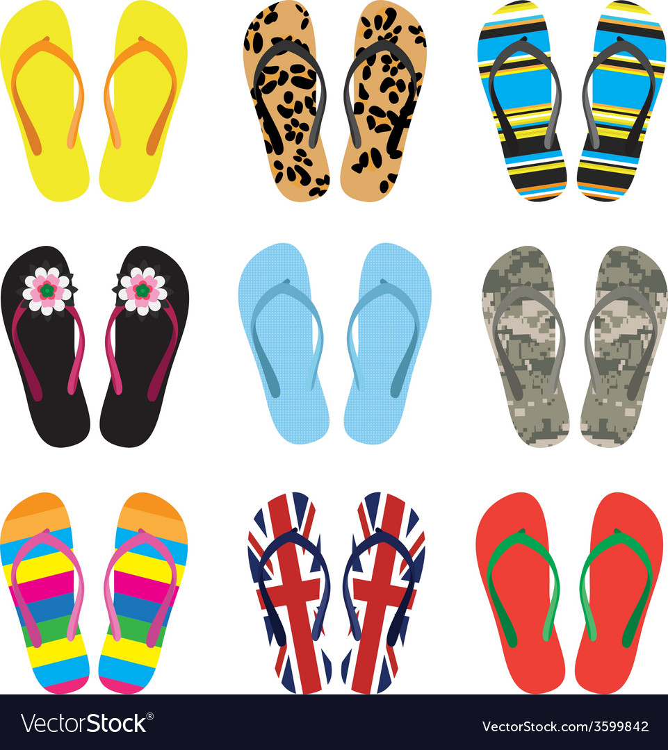 Color flip flops isolated on white vector | Price: 1 Credit (USD $1)