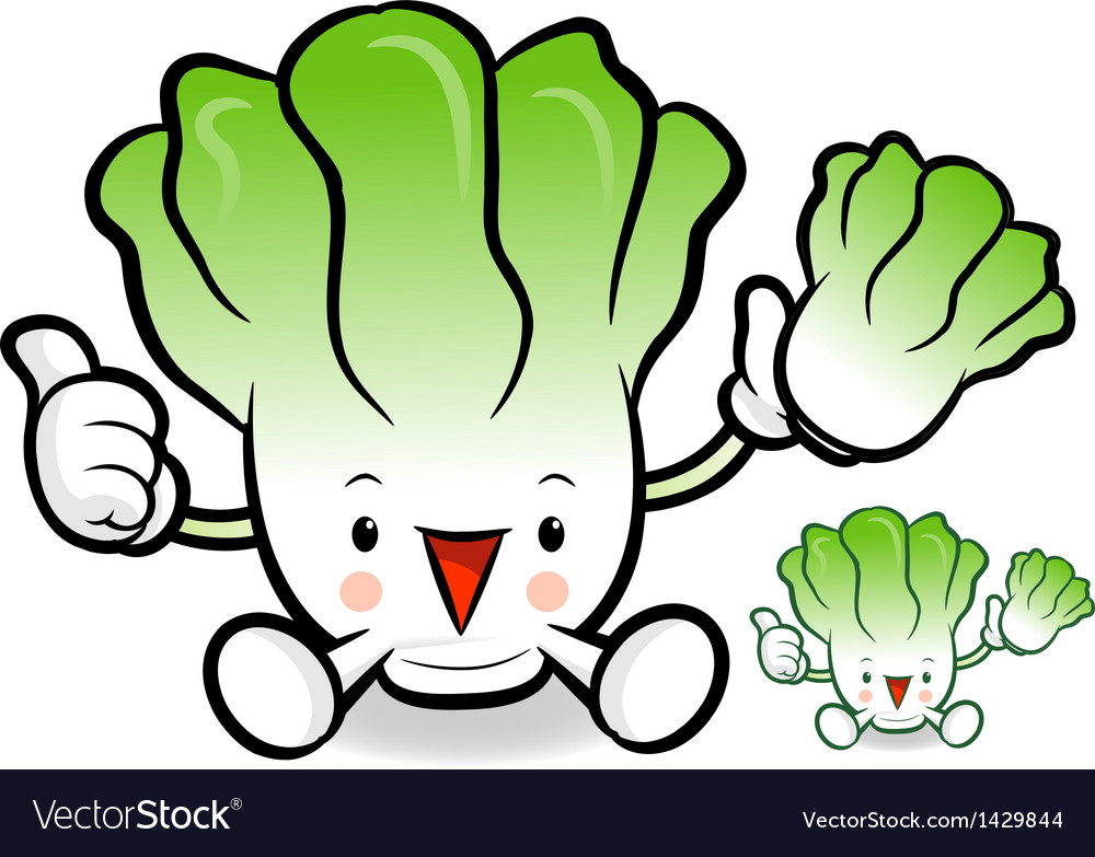Napa cabbage characters to promote vegetable selli vector | Price: 1 Credit (USD $1)