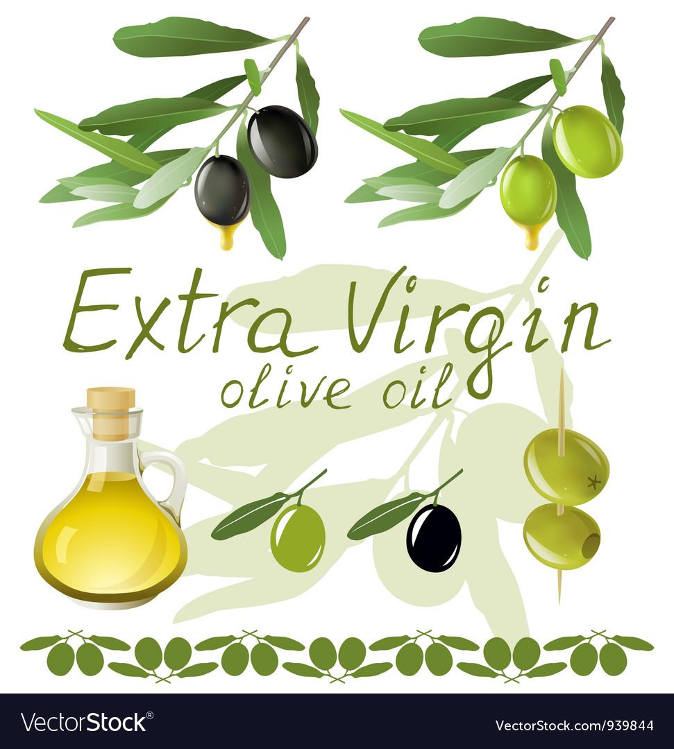 Olives set vector | Price: 1 Credit (USD $1)