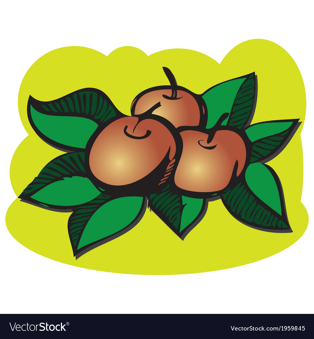 Red apples with green leaves vector | Price: 1 Credit (USD $1)