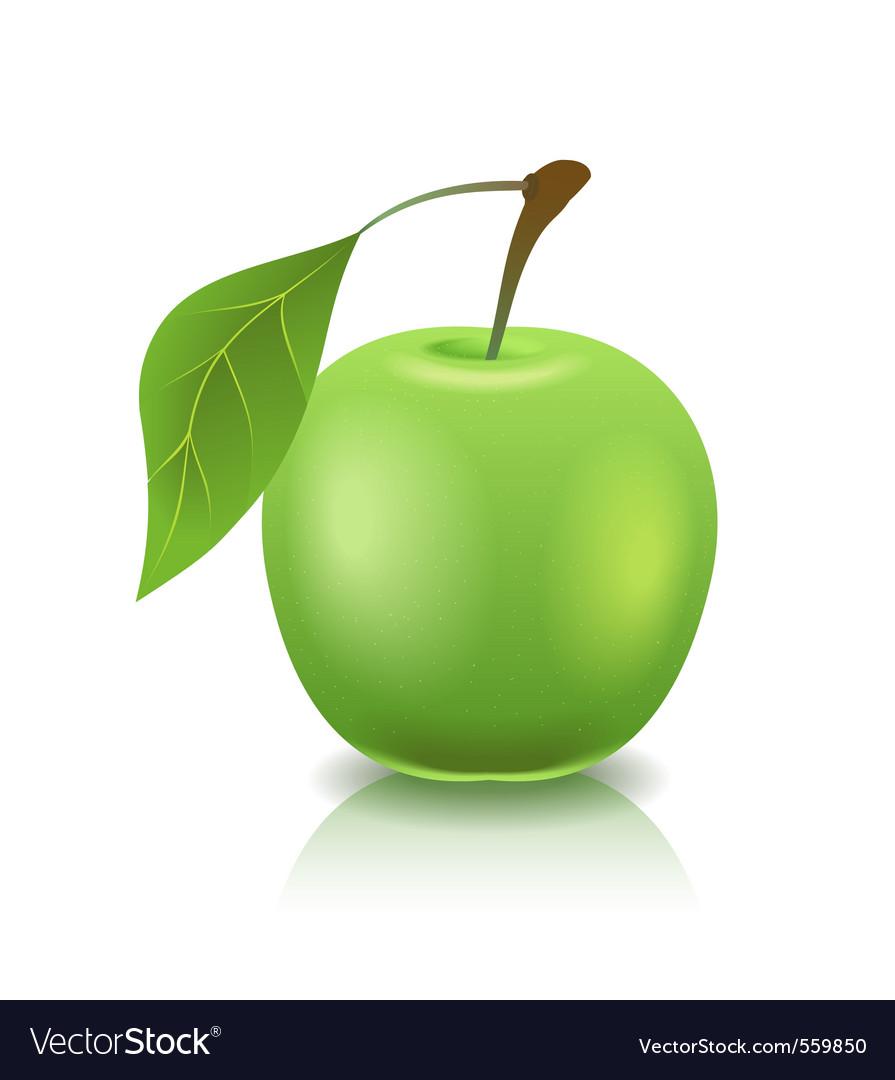 Green ripe apple vector | Price: 1 Credit (USD $1)