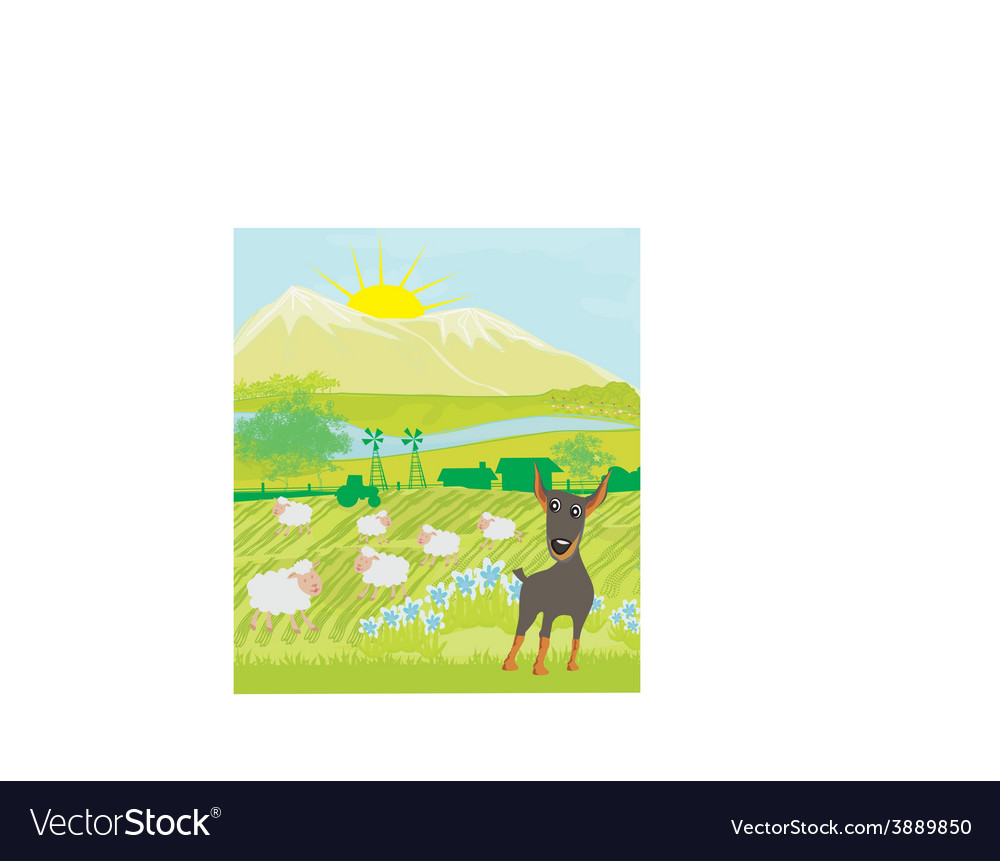 Sheeps and dog vector | Price: 1 Credit (USD $1)