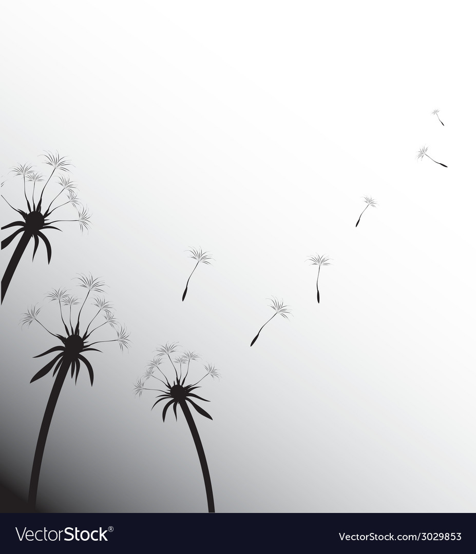 Blow dandelion on white vector | Price: 1 Credit (USD $1)