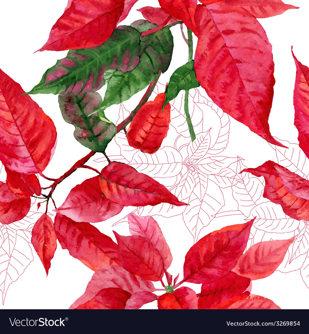 Seamless pattern with poinsettia plant-02 vector | Price: 1 Credit (USD $1)