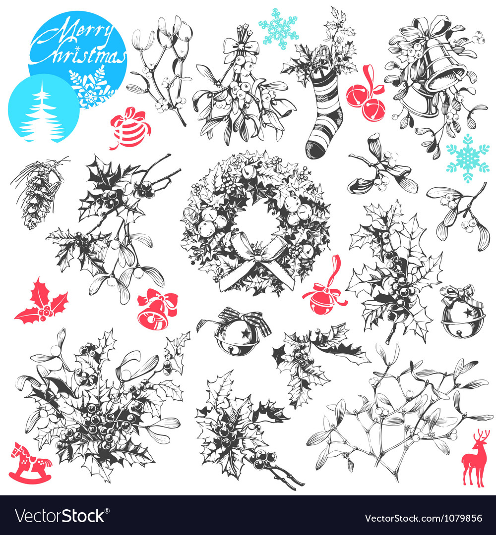 Christmas plants vector | Price: 1 Credit (USD $1)