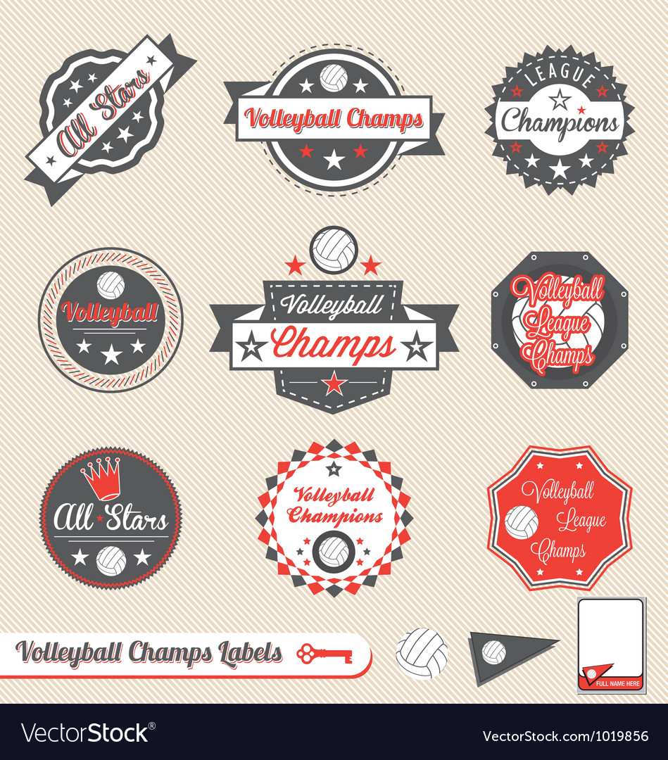 Volleyball league champs labels vector | Price: 1 Credit (USD $1)