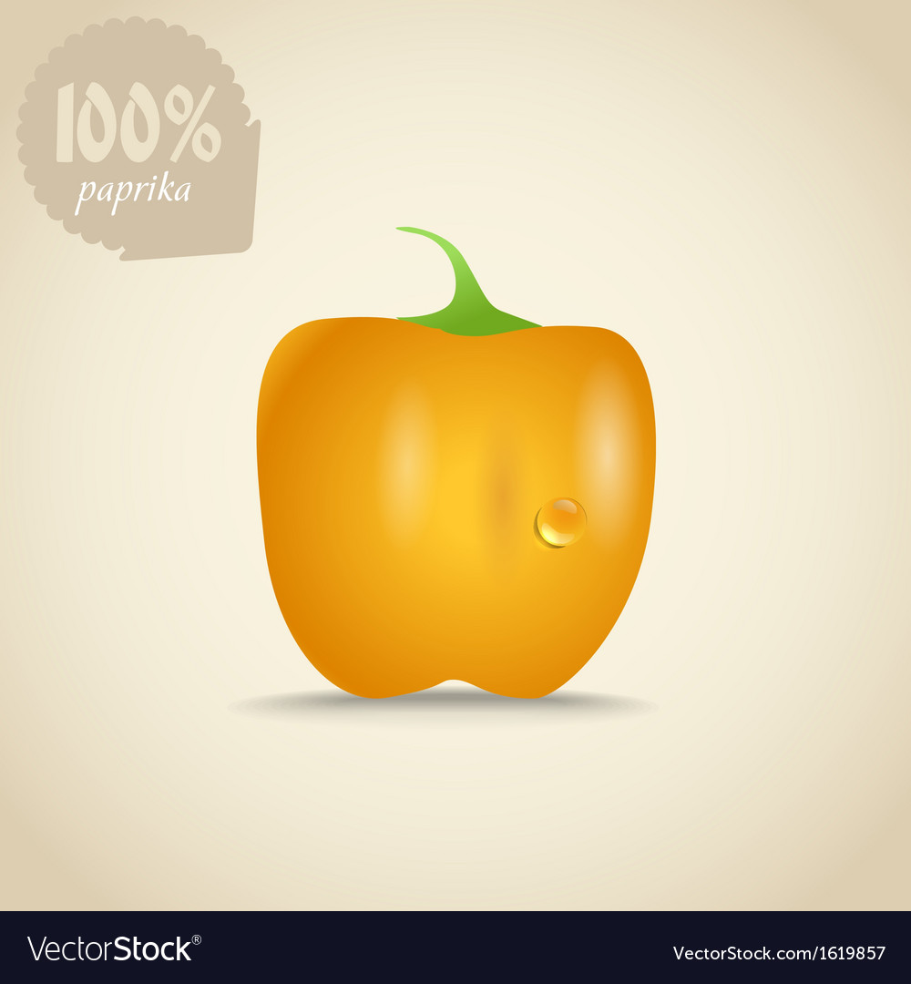 Cute fresh yellow paprica vector | Price: 1 Credit (USD $1)