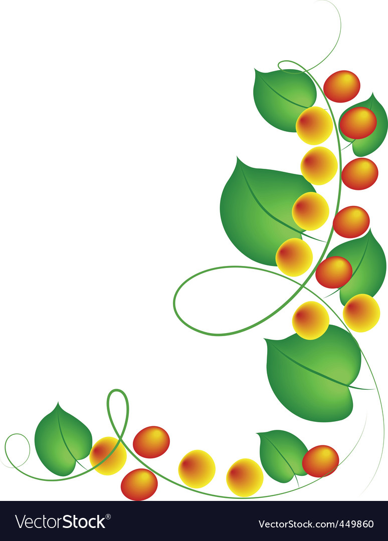 Fruit vine vector | Price: 1 Credit (USD $1)