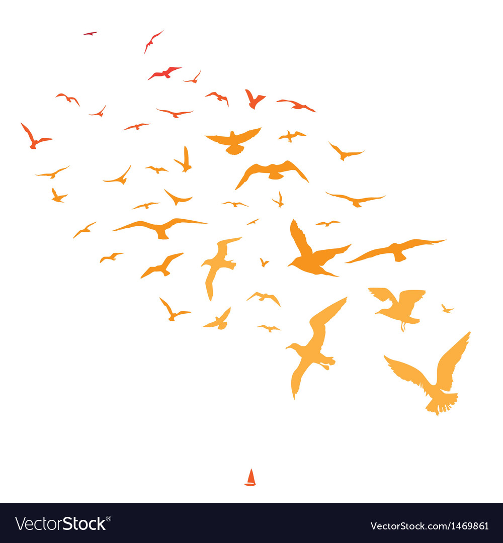 Seagulls and ship at sunset vector | Price: 1 Credit (USD $1)