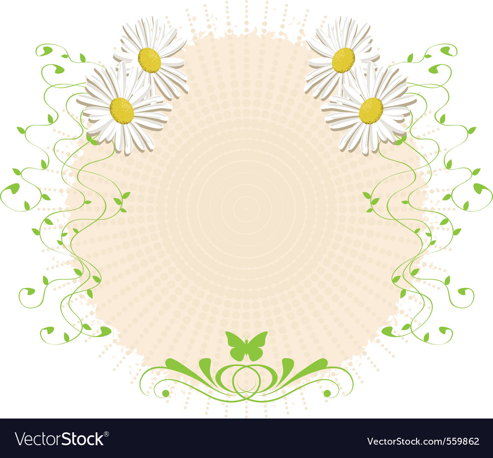 Daisies and branches vector