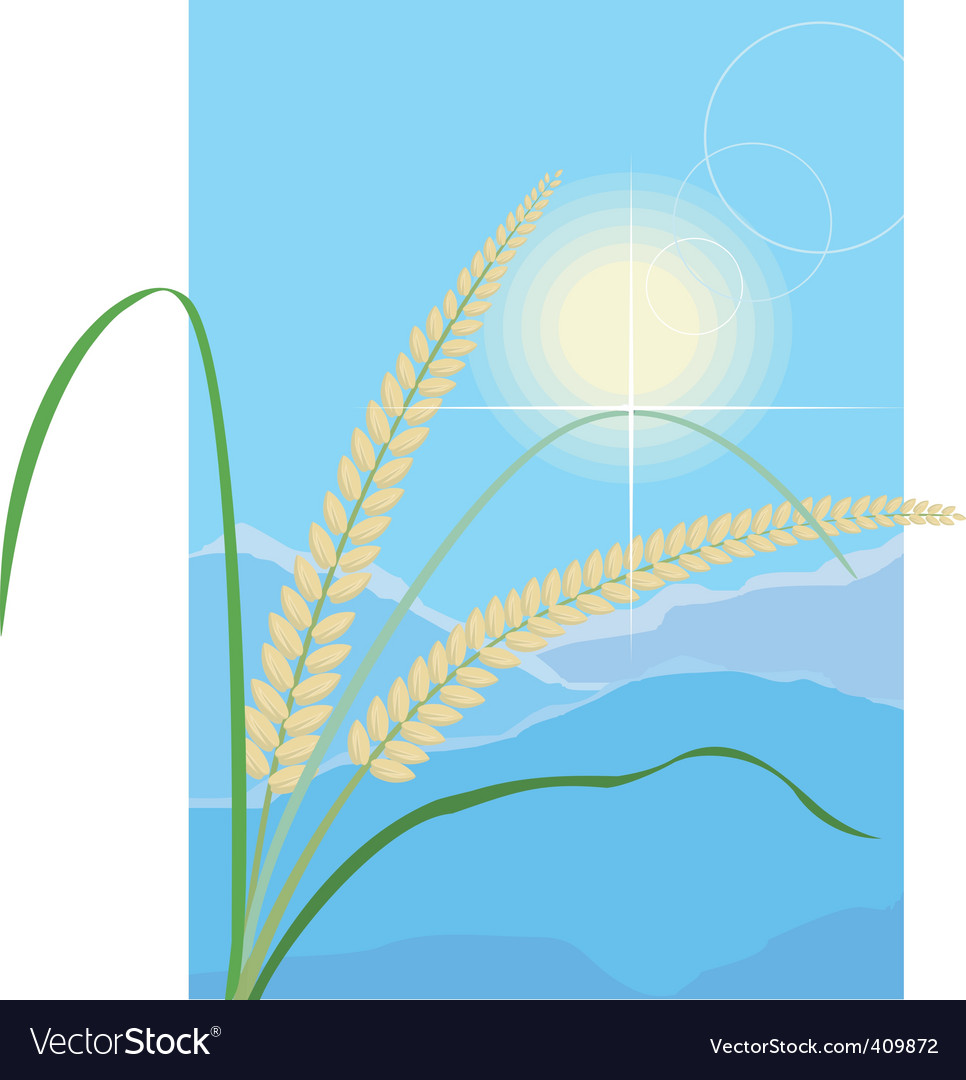Grain and cereal products vector   Price: 1 Credit (USD $1)