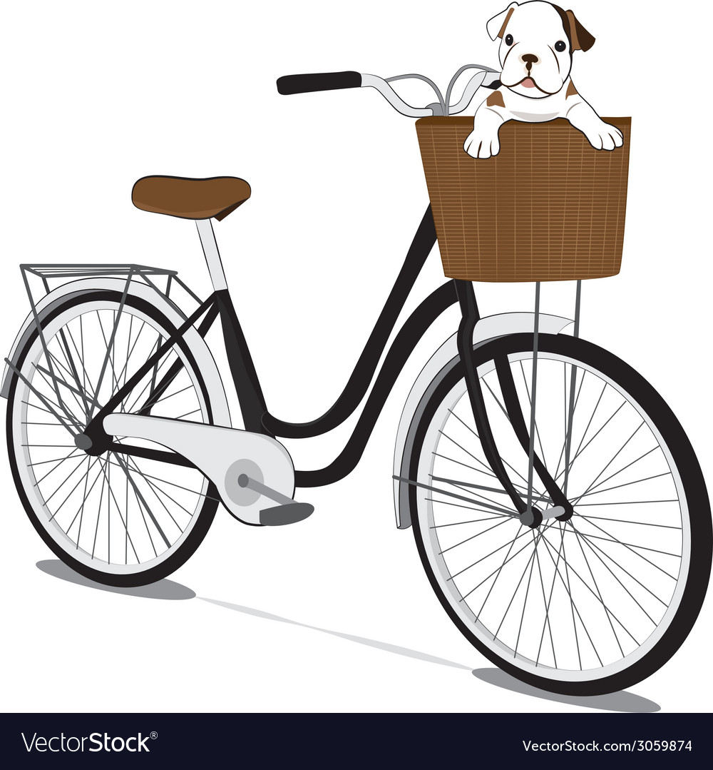 Bicycles and french bulldog puppy vector | Price: 1 Credit (USD $1)