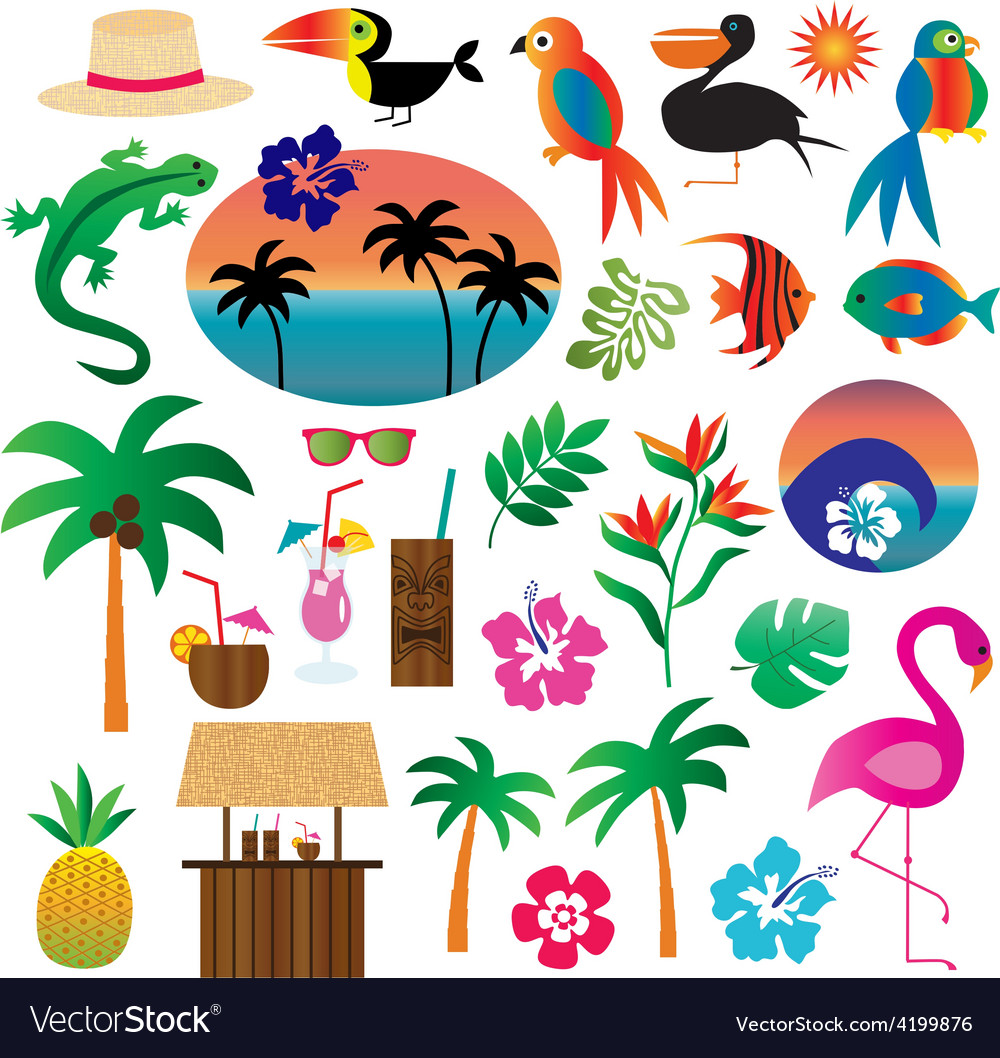 Tropical clipart vector | Price: 1 Credit (USD $1)
