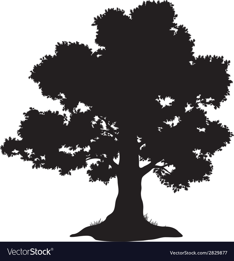 Oak tree and grass silhouette vector | Price: 1 Credit (USD $1)