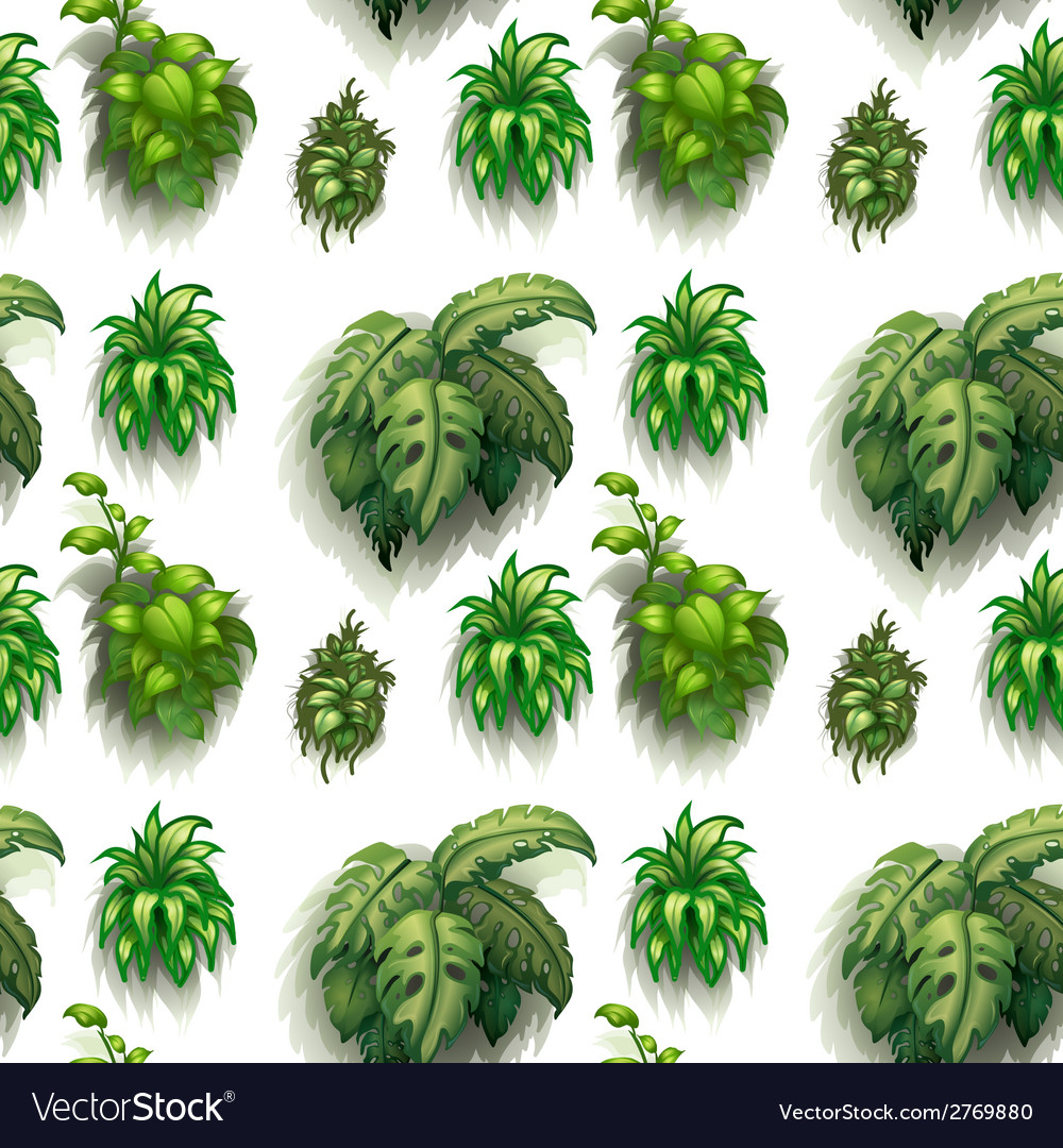 Seamless plants vector | Price: 1 Credit (USD $1)