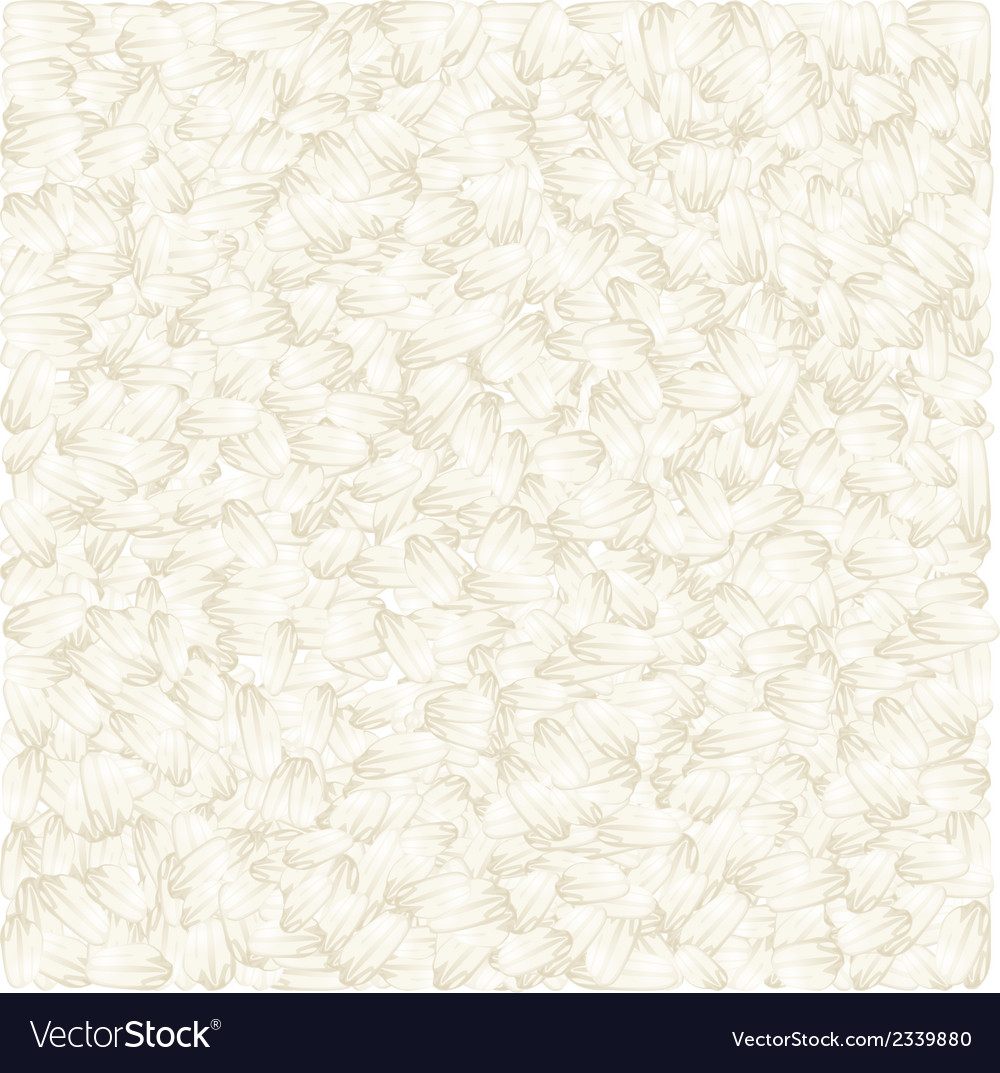 White rice background vector | Price: 1 Credit (USD $1)