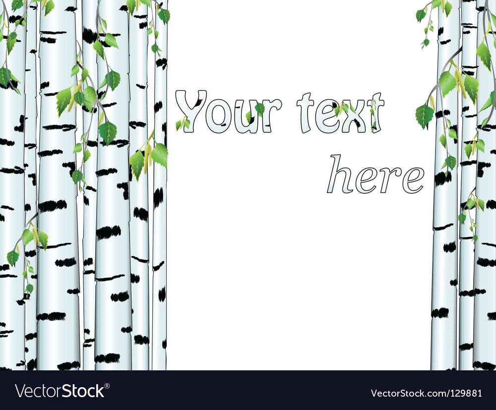 Birch trunk vector   Price: 1 Credit (USD $1)