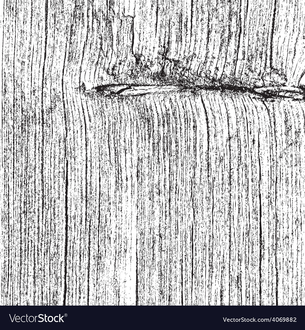 Dry wooden texture vector | Price: 1 Credit (USD $1)