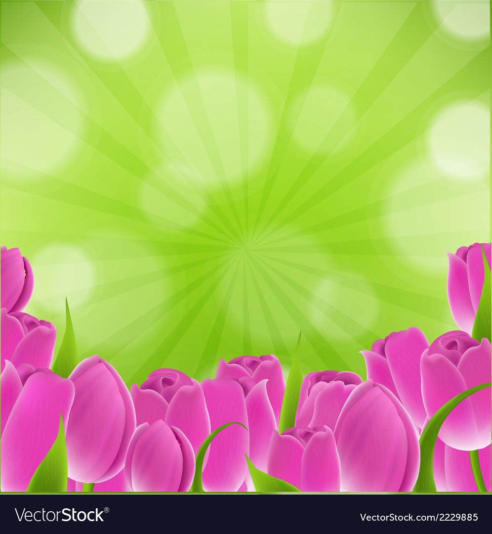 Card with tulips vector | Price: 1 Credit (USD $1)