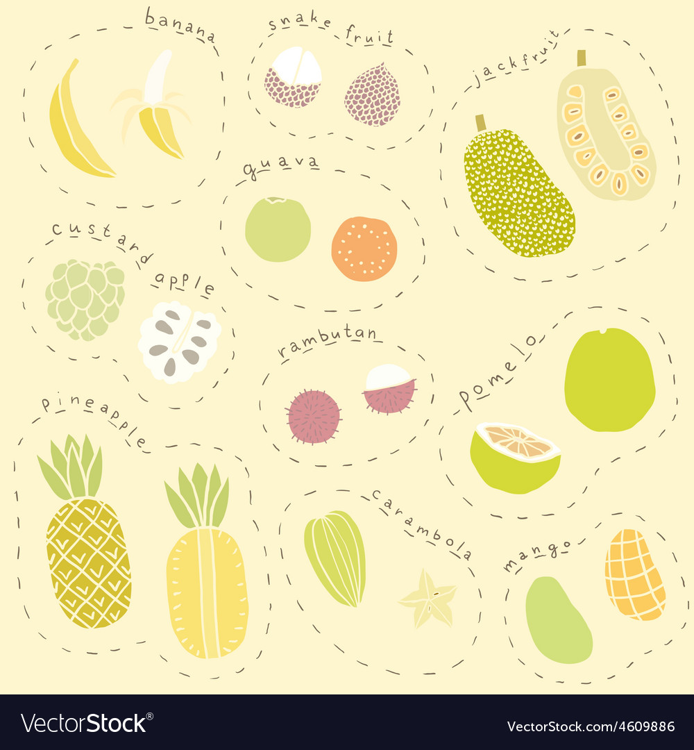 Set of hand drawn tropical fruits part 1 vector | Price: 1 Credit (USD $1)