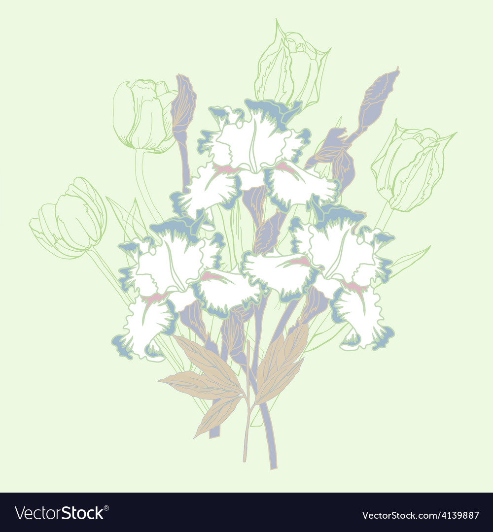 Bouquet with three irises and tulips vector | Price: 1 Credit (USD $1)