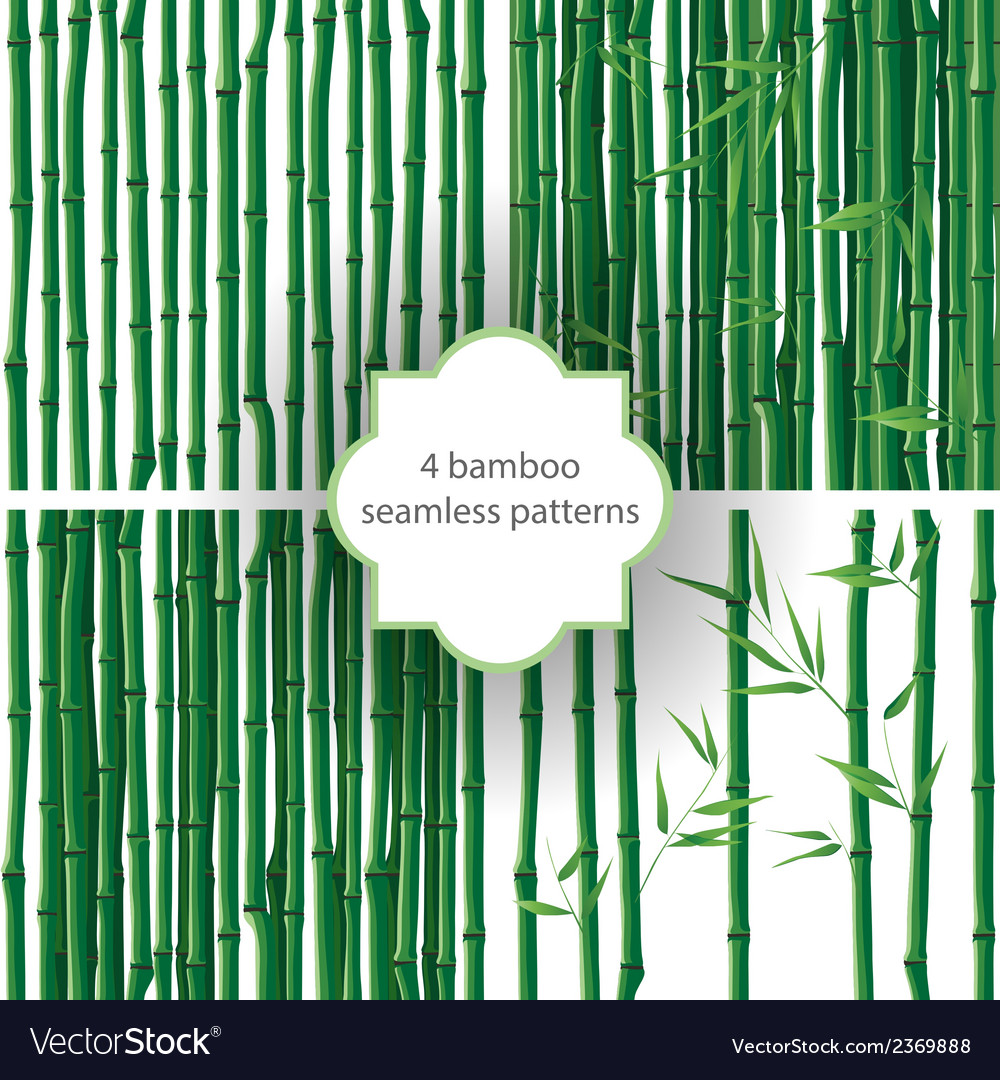 Bamboo patterns vector | Price: 1 Credit (USD $1)
