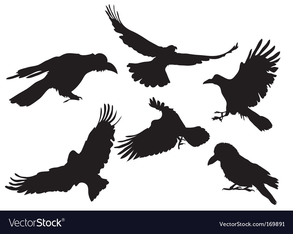 Crow silhouette vector | Price: 1 Credit (USD $1)