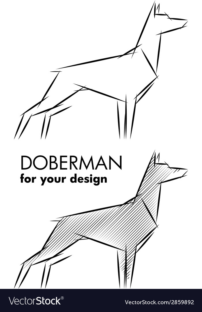 Doberman sketch vector | Price: 1 Credit (USD $1)