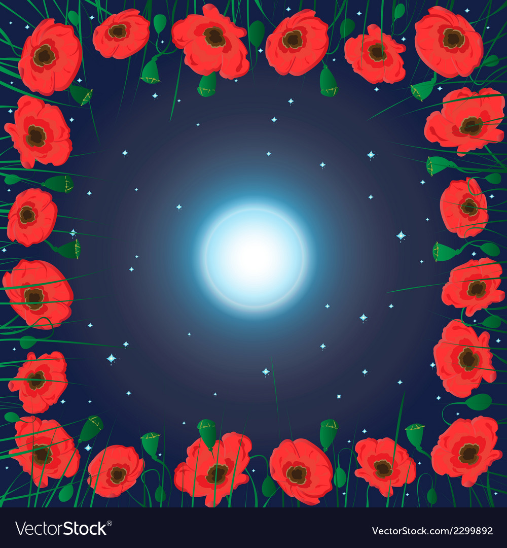 Moon on the sky and field of poppy flowers vector | Price: 1 Credit (USD $1)