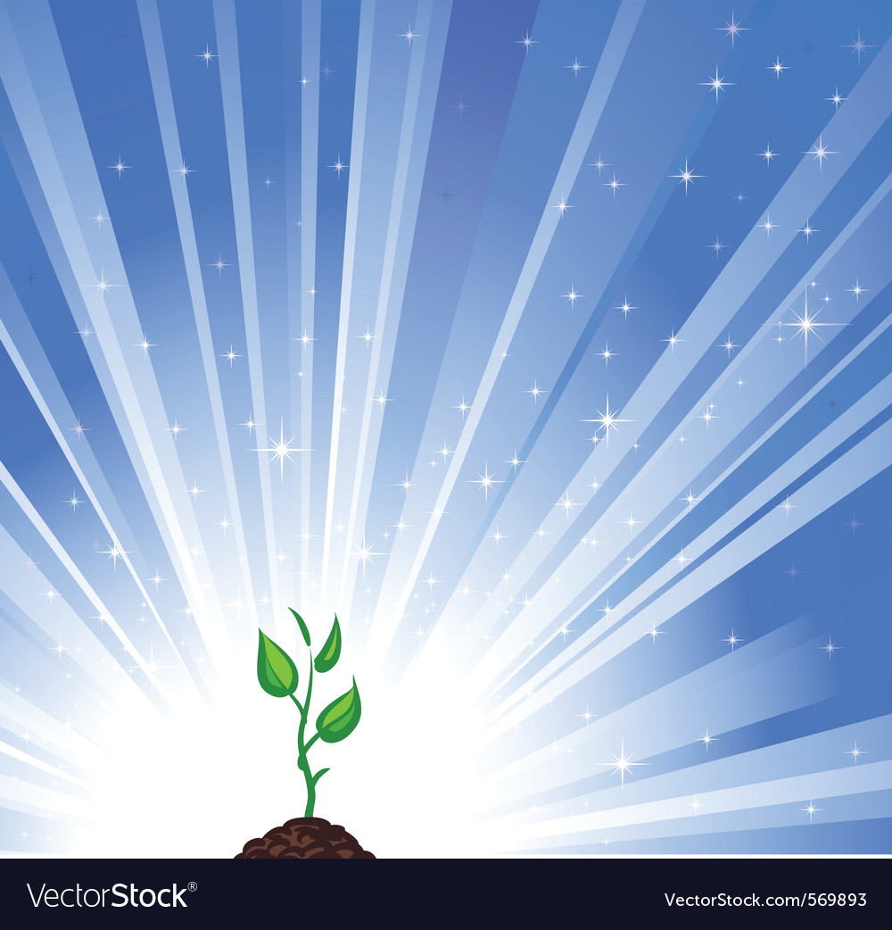 Growing green plant vector | Price: 1 Credit (USD $1)