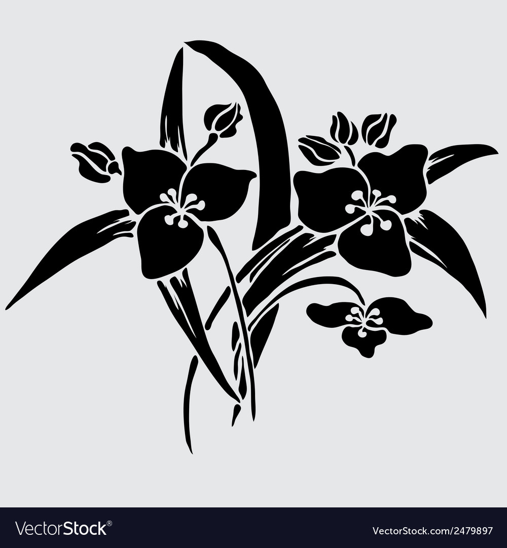 Decorative lilies vector | Price: 1 Credit (USD $1)
