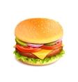 Hamburger realistic isolated vector