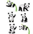 Panda cartoon collection vector