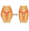 Diet weight loss vector