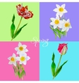 Background with tulips3-05 vector