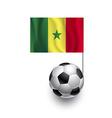 Soccer balls or footballs with flag of senegal vector