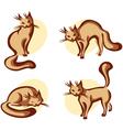 Cute home cat vector
