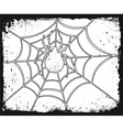 Halloween spider on the net vector
