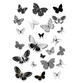 Set of black butterflies vector