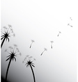 Blow dandelion on white vector