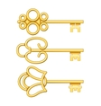 Golden keys set vector