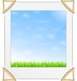 Green grass and blue sky photo vector