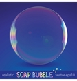 Soap bubble vector