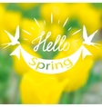 Spring blurry background vector