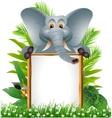 Elephant cartoon with blank sign vector
