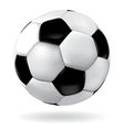 Leather soccer ball vector