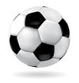 Leather soccer ball vector