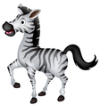 Cute zebra cartoon walking vector